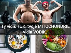 Jaroslav Lachký Movie Posters, Food, Tela, Film Poster, Essen, Meals, Yemek, Billboard, Film Posters