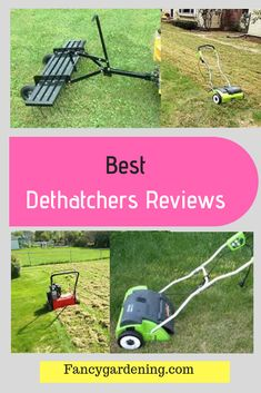Dethatching is one of the common lawn maintenance practices that every landscaper must undertake once in a while in order to maintain a healthy lawn.