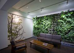 Plant Wall ftw.