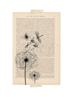 dictionary art vintage butterfly DANDELION floral print - vintage art book page print - dandelion flower blowing in the wind