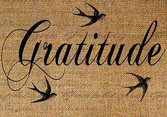 11. UN SIMPLE ACTE DE GENTILLESSE - L'expérience croissante de la gratitude dans ma vie