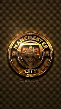 Manchester United, Manchester City Wallpaper, Bussines Ideas, Stunning Wallpapers, Football Wallpaper, Education Humor, Snowy Owl, Arsenal Fc, Fernando Torres