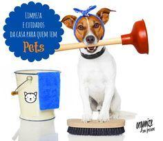 Limpeza e Cuidados da Casa para quem tem Pets