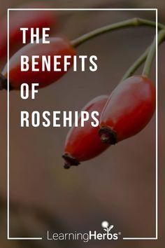 Herbal Remedies, Natural Remedies, Herbs For Health, Green Fruit, Organic Herbs, Healing Herbs, Medicinal Plants, Herbal Medicine, Fresh Herbs