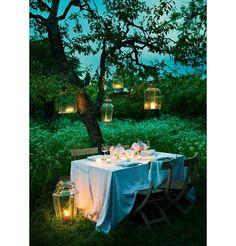 Les longues soirées d'été au jardin :)
