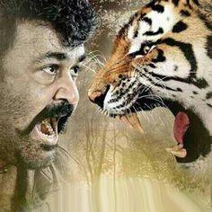 கிராபிக்ஸ் புலி என்பதா? இயக்குனர் மீது பட குழு தாக்கு/Is the graphics tiger? The film crew on the director's attack      5/24/2017 11:55:21 AM  மோகன்லால், கமாலினி முகர்ஜி மலையாளத்தில் ந�... Check more at http://tamil.swengen.com/%e0%ae%95%e0%ae%bf%e0%ae%b0%e0%ae%be%e0%ae%aa%e0%ae%bf%e0%ae%95%e0%af%8d%e0%ae%b8%e0%af%8d-%e0%ae%aa%e0%af%81%e0%ae%b2%e0%ae%bf-%e0%ae%8e%e0%ae%a9%e0%af%8d%e0%ae%aa%e0%ae%a4%e0%ae%be-%e0%ae%87/