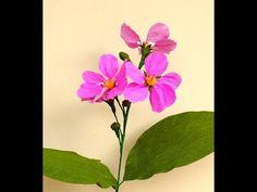 Paper Flower Queen Crape Myrtle \ Lagerstroemia speciosa (flower # 150) - YouTube