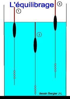 Equilibrage d'un flotteur & plombées 1 correctement plombée 2 Trop plombée 3 Pas assez plombée