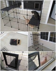 20 Purrfect DIY Projects for Cat Owners - Page 2 of 2 - DIY & Crafts