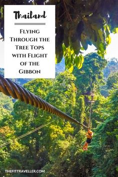 THAILAND: Flying Through the Tree Tops with Flight of the Gibbon. We took to the trees, ziplining between the tree tops in Chiang Mai, Thailand with Flight of the Gibbon. It's one of the best ways to explore the area.