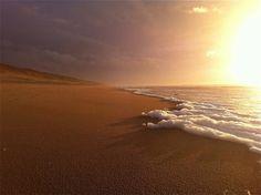 Eén van de mooiste, leegste en schoonste stukken strand van Nederland. Vanaf Castricum aan zee een stuk naar het zuiden lopen en via de waterleidingduinen weer terug... Ik heb een tijdje geleden 's ochtends heel vroeg een vosje vanaf het strand de duinen in zien rennen... prachtig! Rust, schoonheid en leegte. Foto: Peter Donders