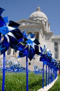 2013 Missouri Pinwheels for Prevention Campaign. Join the Movement!