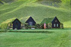 Camouflage door gras op daken van huizen net zoals het gras op de achtergrond.
