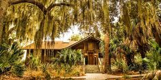 The Lodge at Little St. Simons Island, Georgia - 10,000 acre barrier island, reachable only by boat . . . only 32 guests.