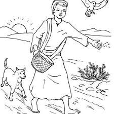 Seed that Falling into Good Soil in Parable of the Sower