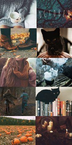 "chamberofaesthetics: "" Ravenclaw in Autumn Gryffindor * Slytherin * Hufflepuff """