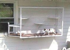 DIY Wall Cat Run - PetDIYs.com