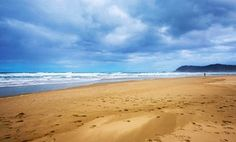 Sedgefield: Win a Two Night Complimentary Stay for Up to Four at Shearwater on Sea - Shearwater On Sea