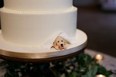 wedding cakes beach Pet Wedding Ideas: 61 Too-Cute Ways to Include Your Pet in Your Wedding Cute Wedding Ideas, Wedding Goals, Wedding Bride, Wedding Planning, Dream Wedding, Wedding Day, Wedding Inspiration, Dogs In Wedding, Wedding Tips