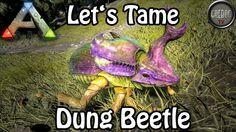 Ark: Survival Evolved - Let's Tame: Dung Beetle (deutsch)