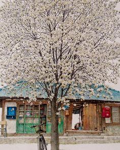 Korean art Building Sketch, Building Art, Korean Illustration, Illustration Art, Korean Art, Anime Scenery, Watercolor Sketch, Painting Lessons, Landscape Art
