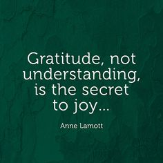 Gratitude, not understanding, is the secret to joy... — Anne Lamott