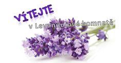 Vítejte! Plants, Luxury, Collection, Lavender, Orange Blossom, Flowers, Perfume Store, Red Heads, Virginia