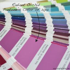 Radiant-Orchid is Pantone's Color of 2014 and I love how fresh and inspiring the color is!