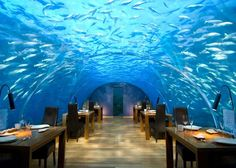 Eat at the underwater restaurant at Conrad Maldives