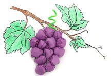Giochi e lavoretti per bambini: Settembre tra uva e vendemmia. Sottocoperta: il portale di Viaggi, Enogastronomia e Creatività