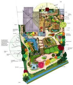 Permaculture Zones on 1/8 of an Acre | Permaculture, Acre and ...