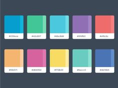 Color Palette by Malena Zook