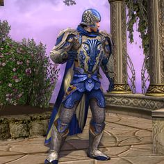 Knight of Dol Amroth