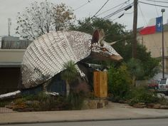Have you ever had your photo taken with a giant, mirrored armadillo?  Scoot on over to Goode's Armadillo Palace, on Kirby Drive, near Rice University and the Medical Center.  Then, go next door to Goode's BBQ and have a big slice of their Texas pecan pie.  Yum.