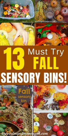 Must Try Fall Sensory Bins! Fall Sensory Activities, Activities For Kids, Fall Activities For Toddlers, Fall Activities For Preschoolers