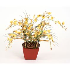 Silk Yellow Oncidium Orchids on a Bamboo Trellis in a Red Square Planter Yellow Home Accessories, Bamboo Trellis, Faux Flower Arrangements, Square Planters, Faux Flowers, Home Accents, Green Colors, Orchids, Planter Pots
