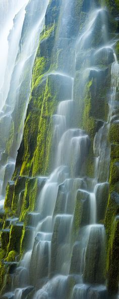 Glacial meltwater flows over the moss covered basaltic columns of Oregon's Proxy Falls
