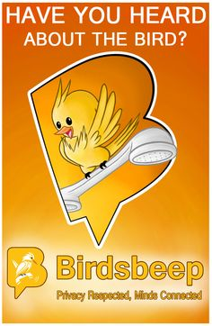 Have You Heard About Bird?
