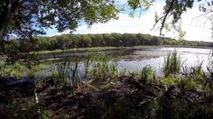 Autumn walk at Delcarte Franklin Massachusetts ~ GoPro  #ErnestDelcarte #DelcarteConservation #FranklinMassachusetts #FranklinReservoir #NatureWalk NatureWalkMassachusetts