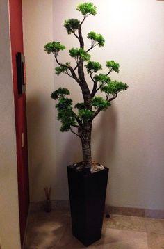 Mejores 34 im genes de naturaleza decorativa en pinterest for Plantas decorativas artificiales df