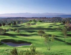 La Purisima Golf Course — a former LPGA and PGA Tour qualifier — rests along the foothills of Lompoc Valley, 45 minutes north of Santa Barbara.