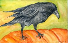 Crow pumpkin painting watercolors paintings by SharonFosterArt
