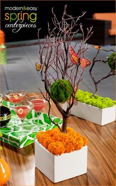 Looking for spring party inspiration? Here are a few surprisingly quick & easy centerpieces that I put together for a Spring themed cocktail party. Branch Centerpieces, Simple Centerpieces, Party Centerpieces, Centerpiece Ideas, Manzanita Centerpiece, Halloween Centerpieces, Graduation Centerpiece, Deco Orange, Rama Seca