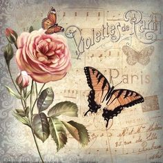 MY TRUNK decoupage: Pink rose, butterflies, French, on light blue-gray. Images Vintage, Art Vintage, Vintage Paper, Vintage Flowers, Vintage Prints, Shabby Vintage, Vintage Butterfly, Butterfly Art, Flower Art