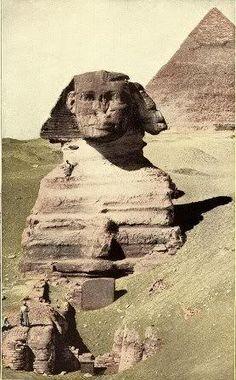 Egypt Unit Study lap books and printables