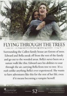Flying through the trees (Volar a través de los árboles) ♥ (02)