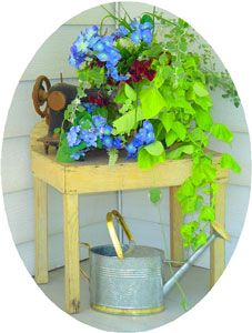 Use items that are otherwise collecting dust and garage sale finds to decorate your outdoor space. We found this sewing machine in a trash pile and purchased the table for $1 at a garage sale. We needed to quickly add some color for an event that would require outdoor photos, so I entwined the blue silk flower swag with the live plants in the bucket and no one knew the difference. The watercan was purchased on clearance at the end of season clearance. My neighbor often tells me she always…