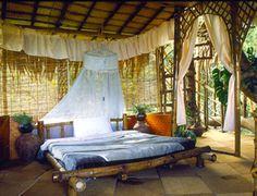 Tree House Hotel in North Kerala