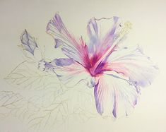 Watercolor demo of yellow hibiscus step 2 by artist Lisa Hill