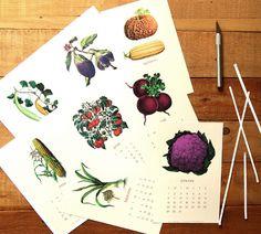 2017-printable-vegetable-garden-calendar-2